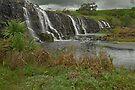 Hopkins Falls by mspfoto