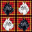 Black and White Scottish Terriers by dbvisualarts