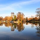 River Wey, Pyrford, Surrey by Graham Prentice