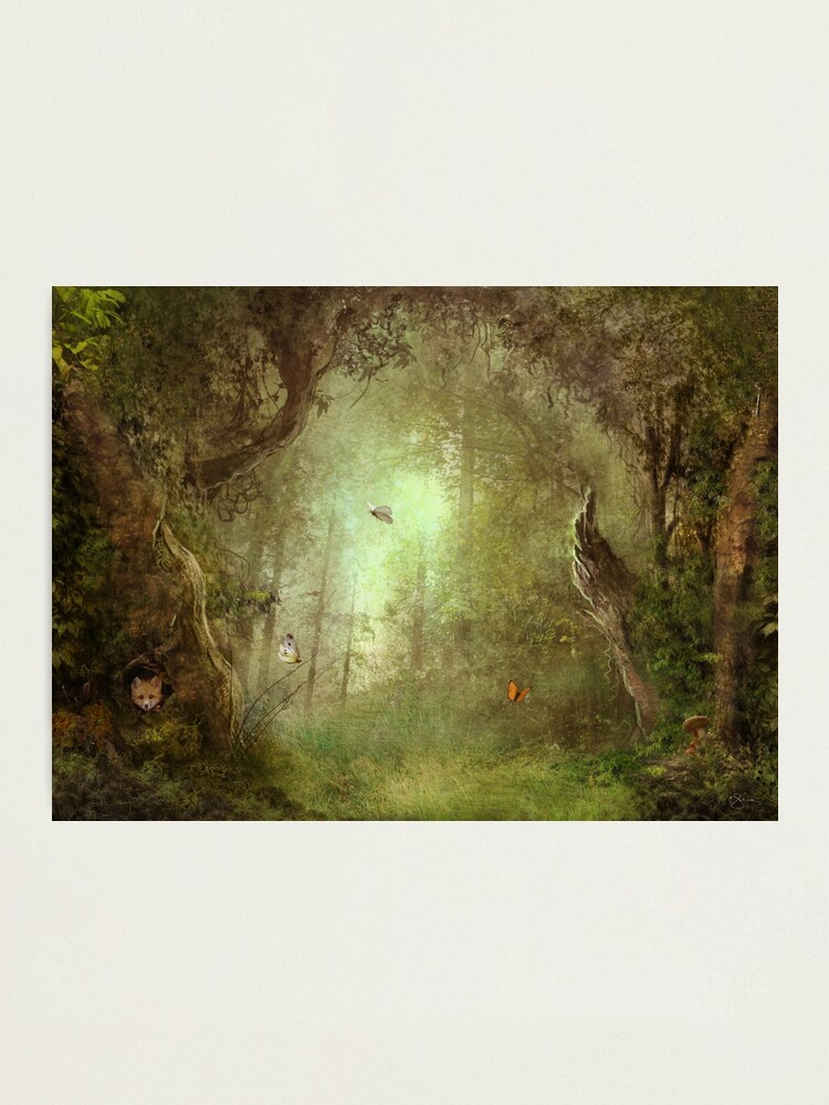 Alternate view of Butterfly Grove Photographic Print