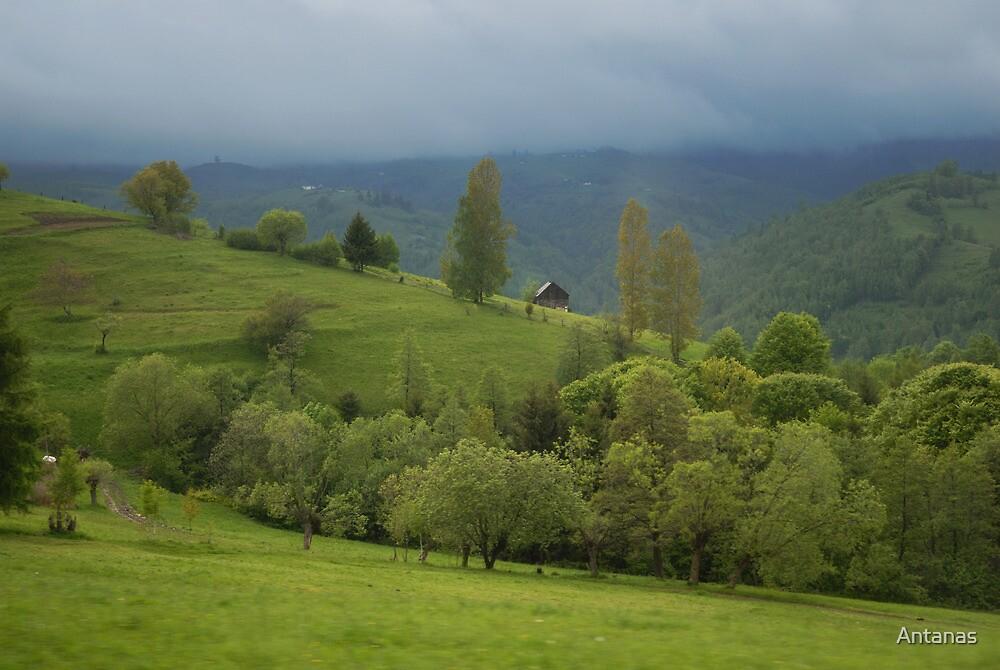 Lonely house in mountains, Romania, Transylvania Region by Antanas