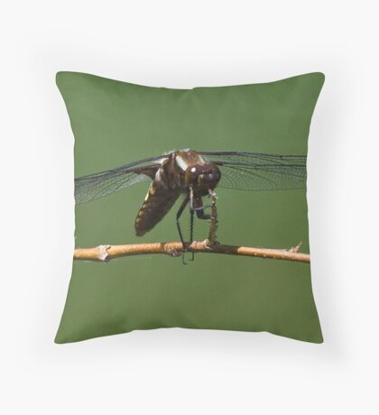 Zootz the Dragonfly tootin' his horn Throw Pillow