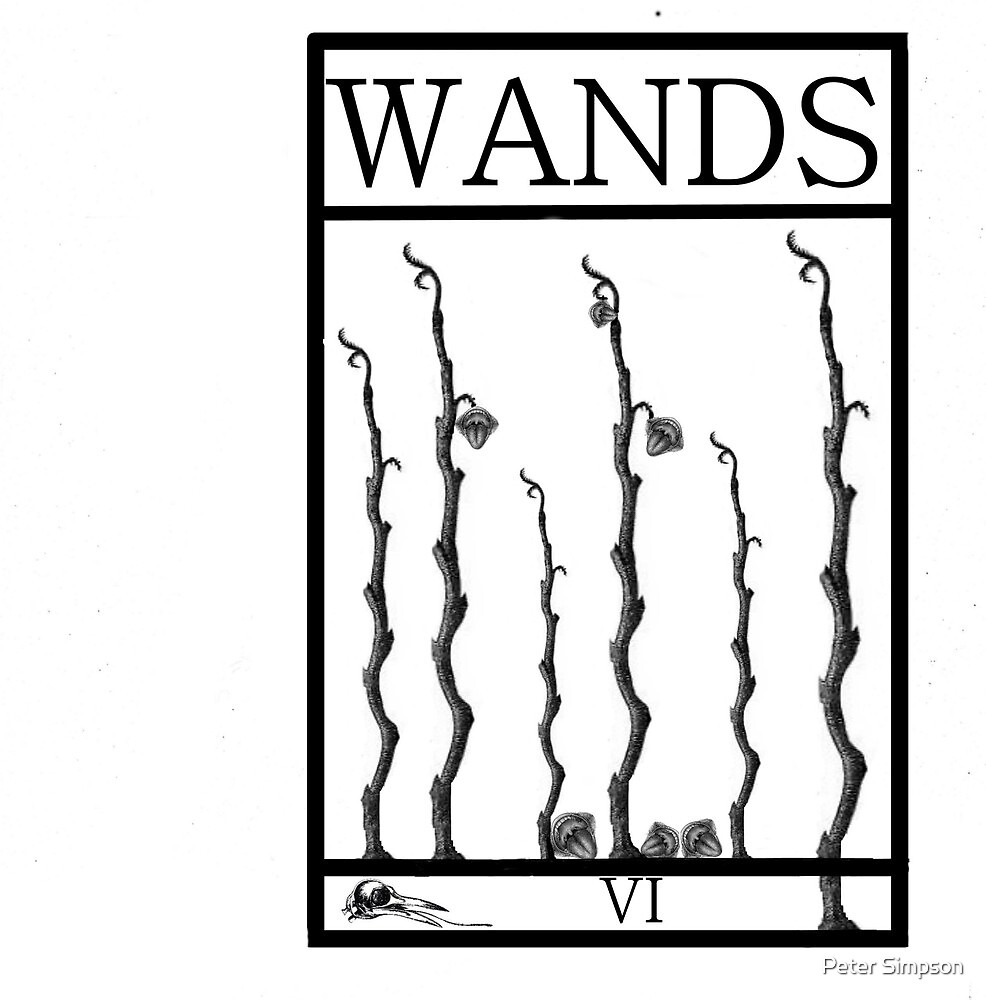 6 of Wands by Peter Simpson
