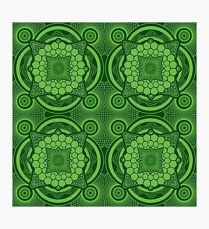 Green Mandala Pattern Photographic Print
