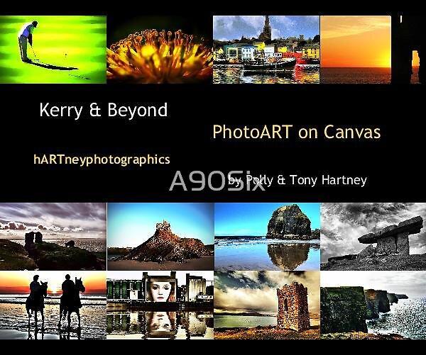 Kerry & Beyond Photoart Book by A90Six