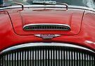 Austin Healey 3000 mk3 bonnet & grill by David Carton