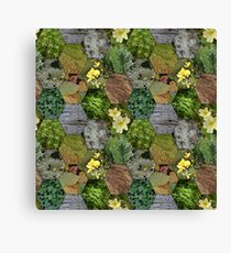 Glimpses of the Slieve Bloom 1 Canvas Print