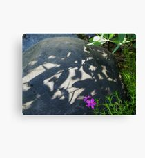 Shadows on the Rock Canvas Print