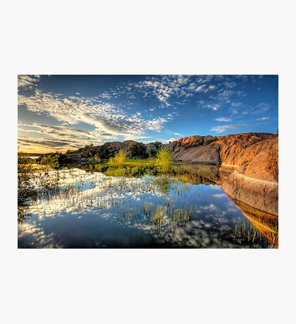 Willow Cove Photographic Print