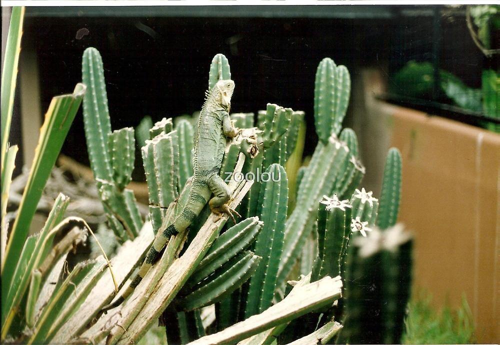 The Lizard Army! Hey Ma! I know how to Camoflarge  Green Cactus! by zoolou