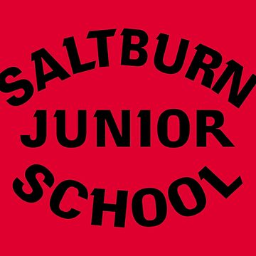 NDVH Saltburn Junior School 1 by nikhorne