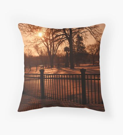 Fence With A View Throw Pillow