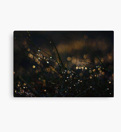 Fairy Eden Canvas Print