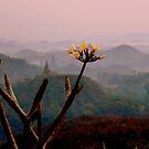 Mrauk Oo at dawn by Brian Bo Mei