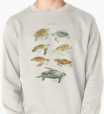 Sea Turtles Pullover Sweatshirt