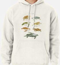 Sea Turtles Pullover Hoodie