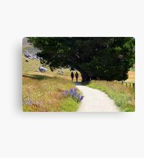 Walking To Castle Hill Canvas Print