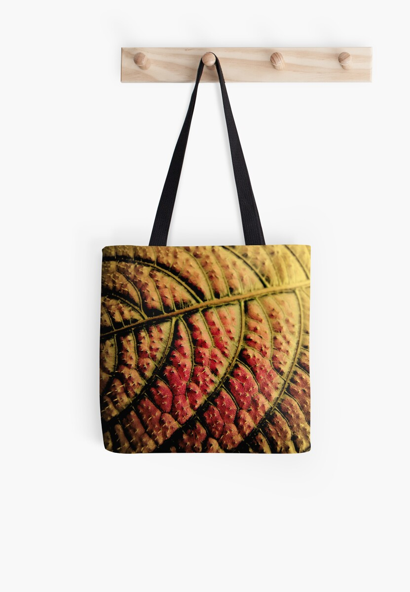 Autumn Leaf by Jean Gregory  Evans
