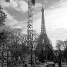Eiffel from right bank by Dominique Meynier