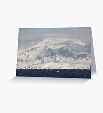 Antarctic Greeting Card
