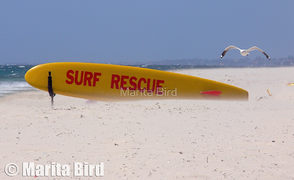 Surf Lifesavers surfboard - Cottesloe Beach, Perth, Western Australia (14-12-2006) by Marita Bird
