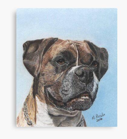 Tyson in Color Canvas Print