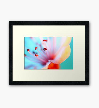 Blossom In Blue Framed Print