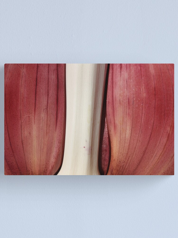 Alternate view of pink and white Canvas Print