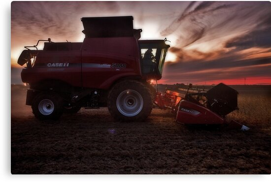 Sunset Harvesting by Steve Baird