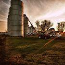 Harvest Sunset by Steve Baird