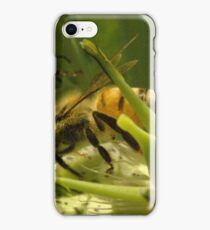271 Bumble Bees iPhone Case/Skin