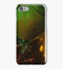 272 Green Shield Stink Bug iPhone Case/Skin