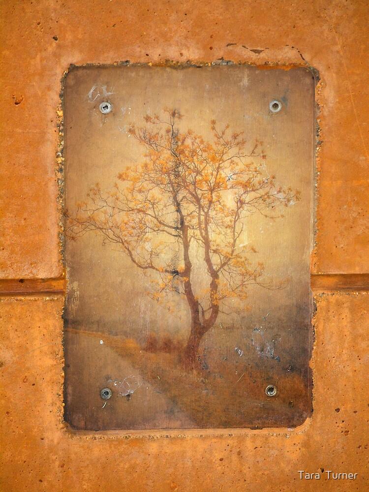 The Last Tree by Tara  Turner