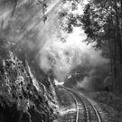 On track by Mel Brackstone