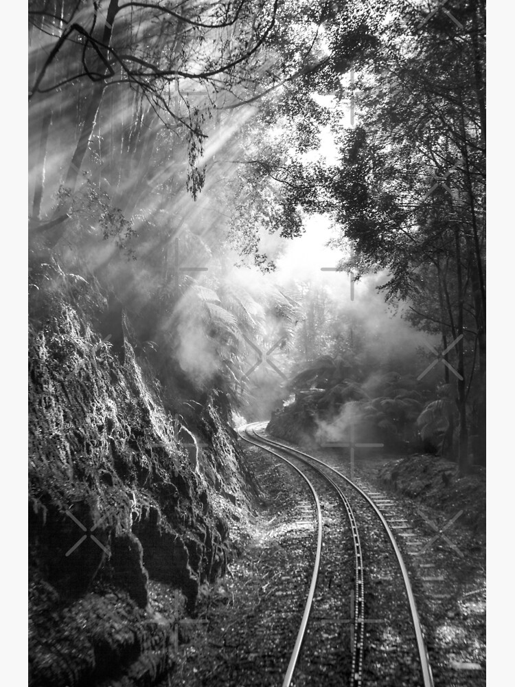 On track by MelBrackstone