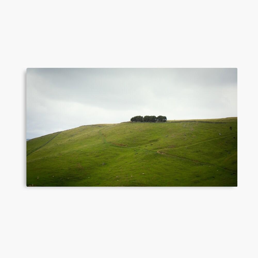 On the ridge Canvas Print