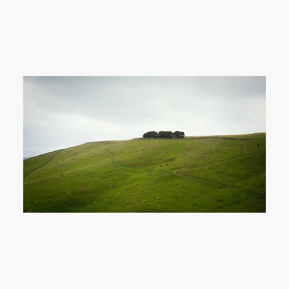 On the ridge Photographic Print