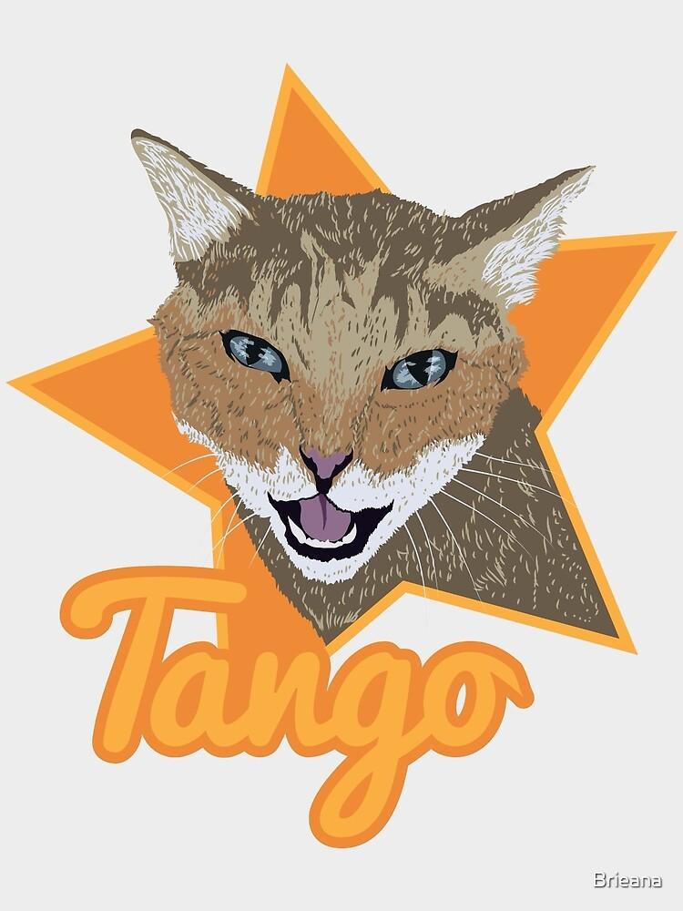 Tango by Brieana