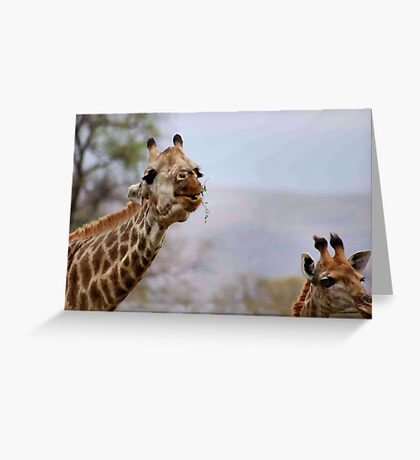 SHAPY AND PATTY- YEAH, Thats us for shapes and patterns! Greeting Card