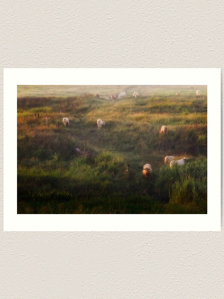 Alternate view of The cows Art Print