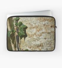 Ivy in the Sun Laptop Sleeve