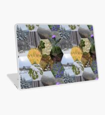 Glimpses of the Slieve Bloom 2 Laptop Skin