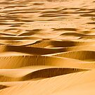 Ribbons of Sand by Peter Doré