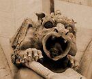 Gargoyle in a Gargoyle by Andrew Dickman