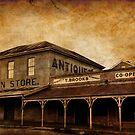 Vintage Grain Store  by pennyswork