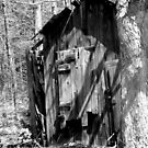 Old Shed in BW by vigor