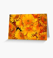 Yellow Gerberas Greeting Card