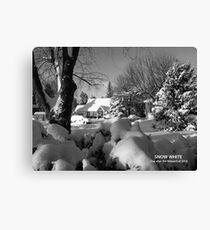 Snow White -- the blizzard of 2010 Canvas Print