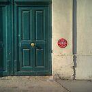 The door by laurentlesax