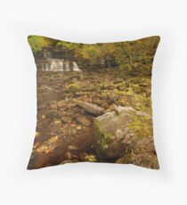Cotter Force, Appersett, Wensleydale, Yorkshire Dales Throw Pillow